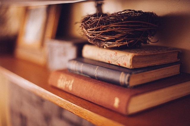 OBRÁZEK : knihy.jpg
